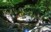 Γεφύρι Του Κάππα Στα Ταμπάκικα