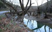 Ζευκτό Γεφυράκι Στο Γηρομέρι