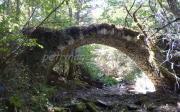 Γεφύρι Της Σιώμενας