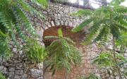 Γεφύρι στο εκκλησάκι της Αγίας Βαρβάρας